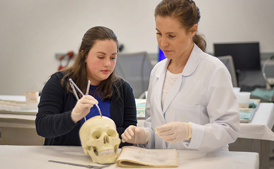 through the internship program the harris county institute of forensic sciences prepares students for future careers in forensic science in many different